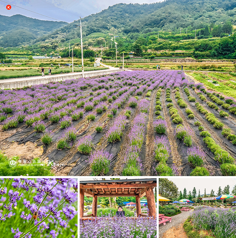 Jeollanam-do-travel-9