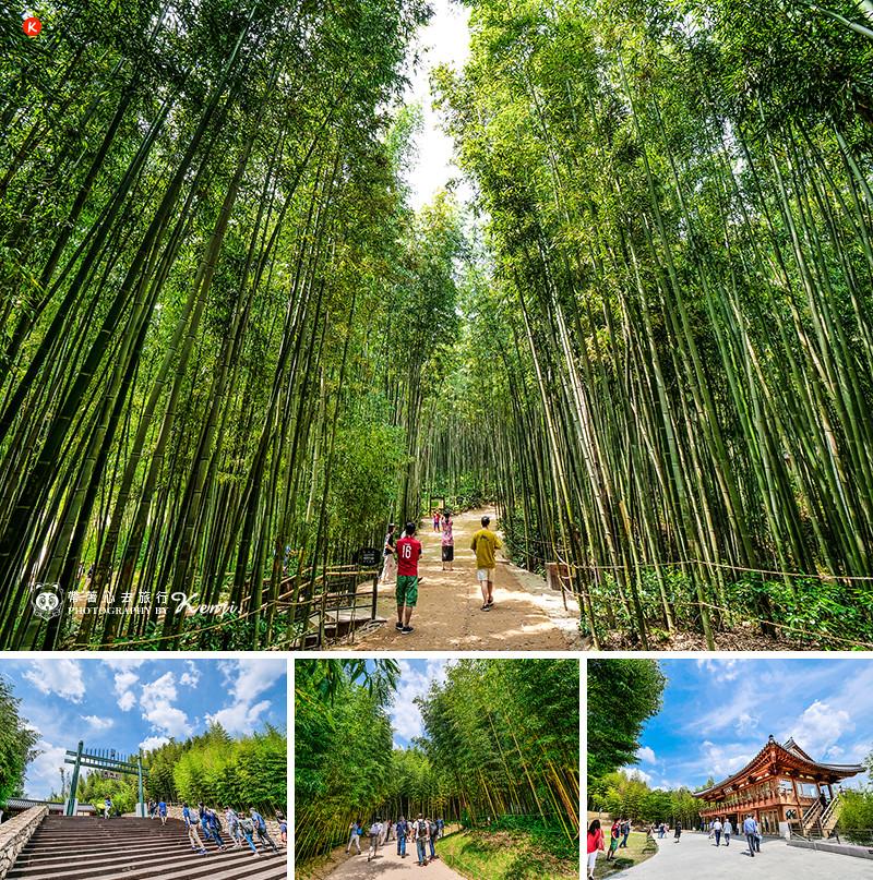 Jeollanam-do-travel-4