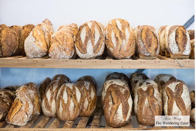 Shelves of fresh baked bread