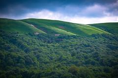 Alpine meadows near Dilijan, Armenia