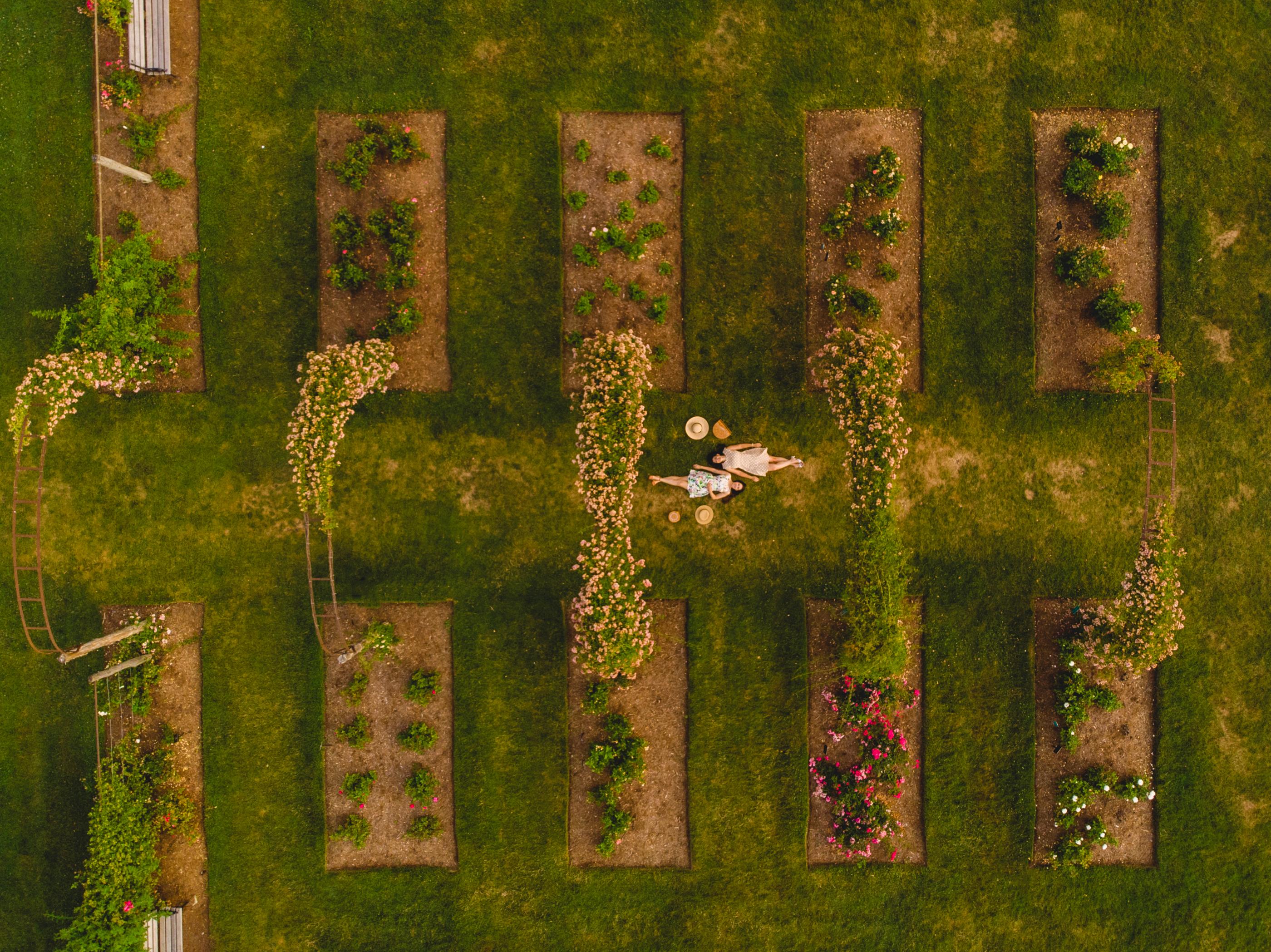 Elizabeth Park Drone Photos