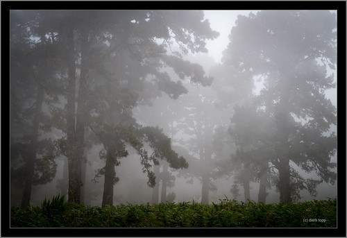 Sony A7RII, Sony FE 24-105mm f/4 G OSS