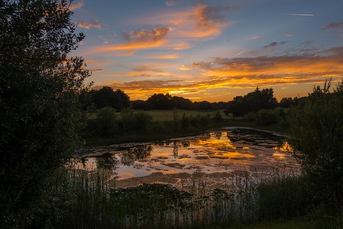 thurnham summer sunset lake maidstone reflections sonyrx100m3 water bearstedgolfcourse kent tree clouds england
