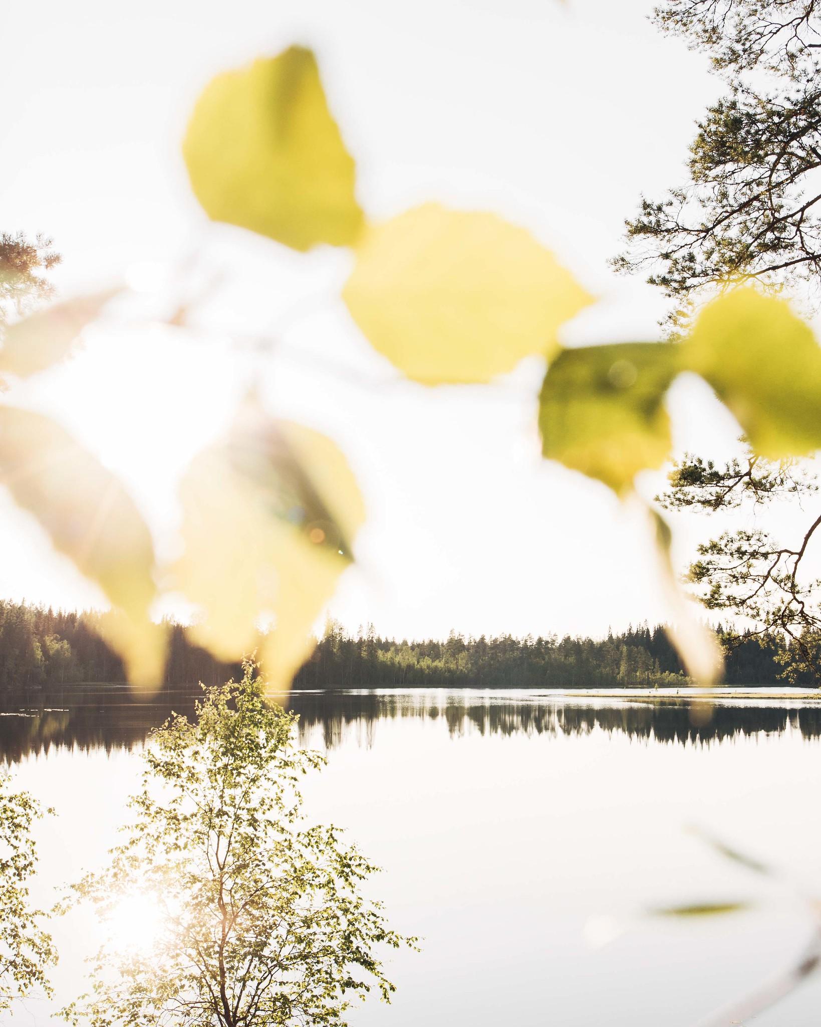 järvimaisema auringonlaskussa