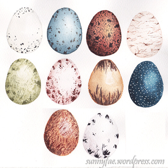 eggs watercolour techniques