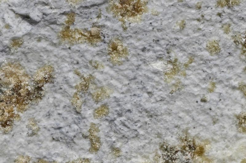 ホルツタムざくろ石 / Holtstamite