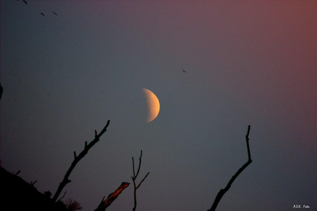 Eclipse parcial de luna, el 16 de julio de 2019.
