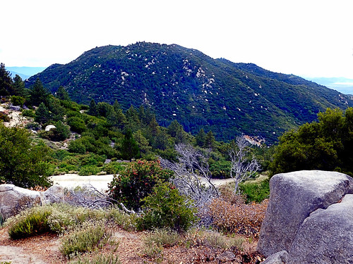 sanbernardinonationalforest idyllwild california photo digital summer landscape mountain chaparral