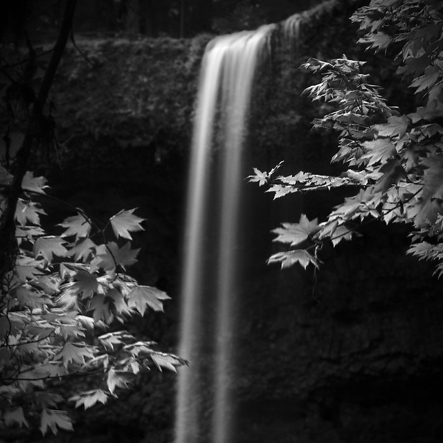 Upper South Falls with Maple