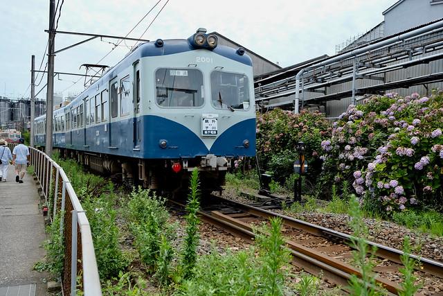 FXP25604