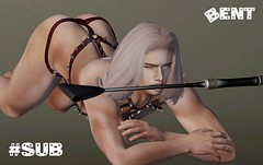 #Flogger pose pack, includes prop