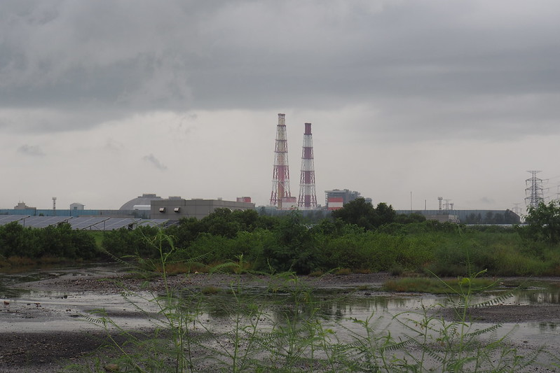 永安濕地因電廠開發面積縮減,電廠營運的聲音是否影響生物行為?攝影:李育琴