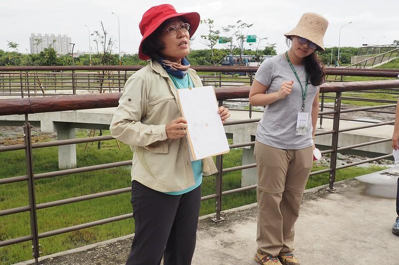 參與者以繪畫描述聆聽濕地的感受。攝影:李育琴