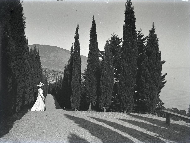 1897. Гурзуф. Дама среди кипарисов