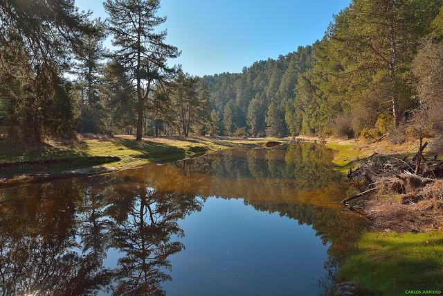 Cañón del Río Lobos (Soria, España).