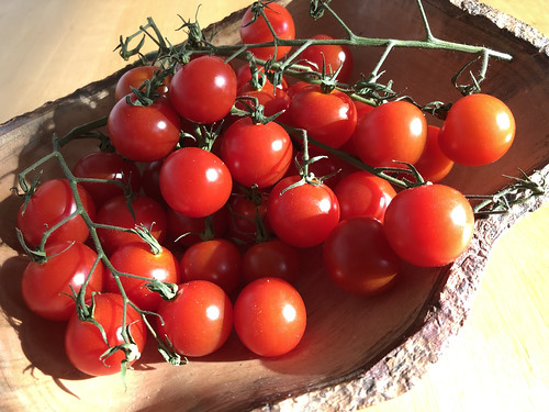 Bowl of cherry tomatoes in the sun