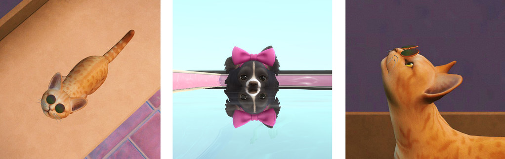 Tomar capturas de mascotas en Los Sims 4