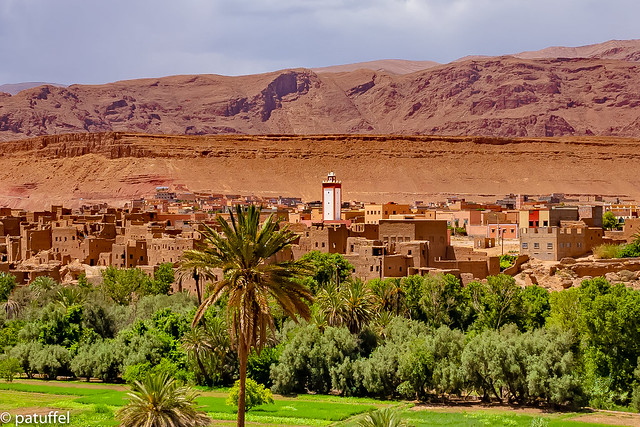 Oasis at the entrance to the Todra Valley (Morocco)