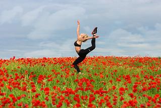 Poppies # 12