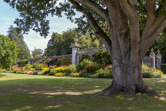 Cliveden's gardens