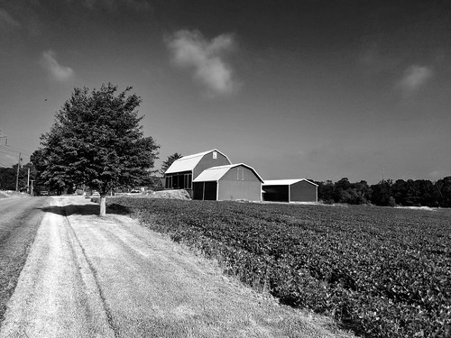 farm barn blackandwhite monochrome starkcountyohio ohio field landscape affinityphoto saddlescenes