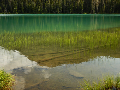 Reflection of the mountain in the seagreen glacial Lower Joffre Lake on the Duffey Lake Road (Hwy 99), BC, Canada