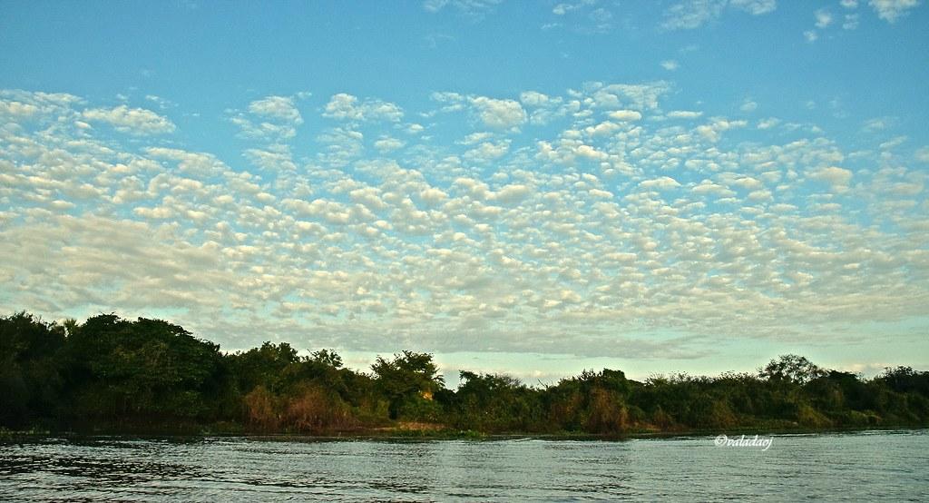 Rio Paraguai, Pantanal, Cáceres MT - Brasil