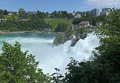 Rheinfallfelsen