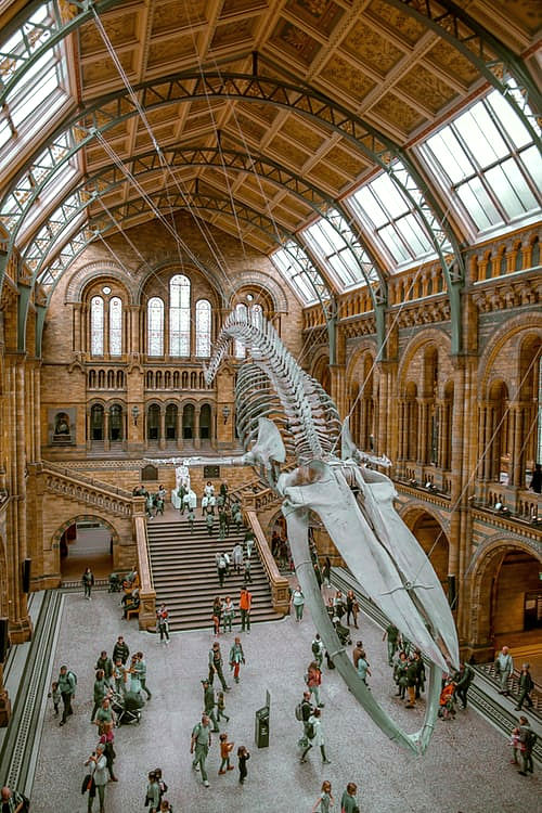 Top tips for London sightseeing