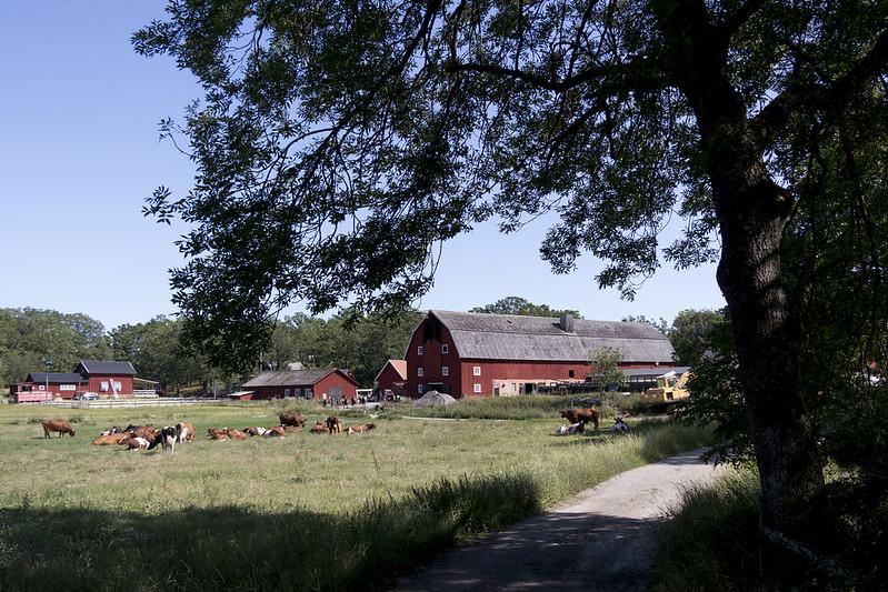 Stegsholms Gård