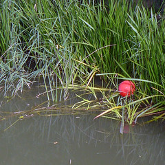Red balloon floating in the Ebro