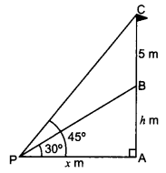 CBSE Previous Year Question Papers Class 10 Maths 2019 (Outside Delhi) Set III Q24
