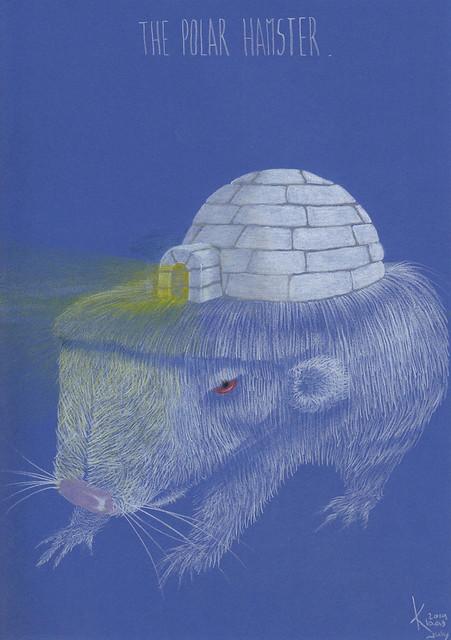 The Polar Hamster.