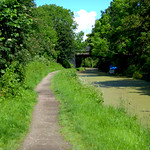 Green waterway at Preston
