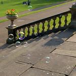 Bubbles at Miller Park, Preston