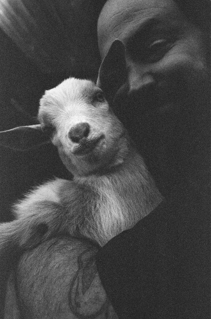 A man and his goat