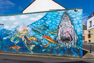 HOOKED FISH AND CHIP RESTAURANT [HENRY STREET GALWAY]-154355