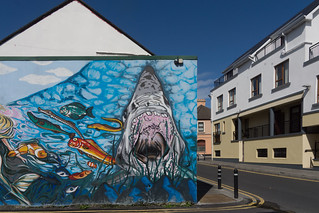 HOOKED FISH AND CHIP RESTAURANT [HENRY STREET GALWAY]-154356