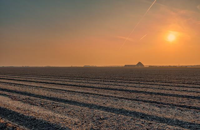 Infinite farmland gazed upon by the sun.