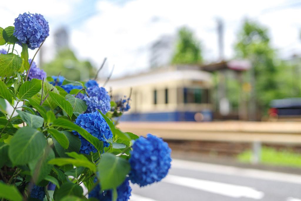 20190614_waseda (1)