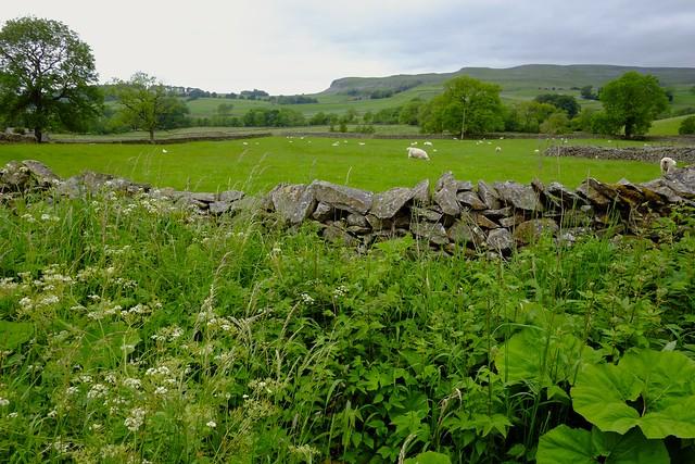 Rural Yorkshire National Park..