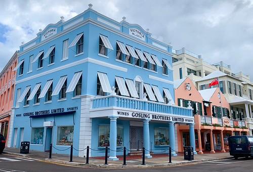 Bermuda 16