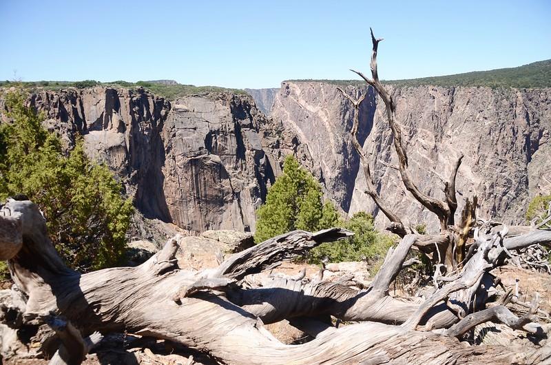 Chasm View Nature Trail (North Rim) (30)