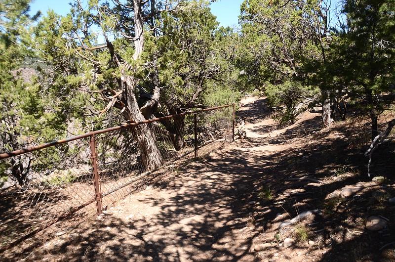 Chasm View Nature Trail (North Rim) (28)