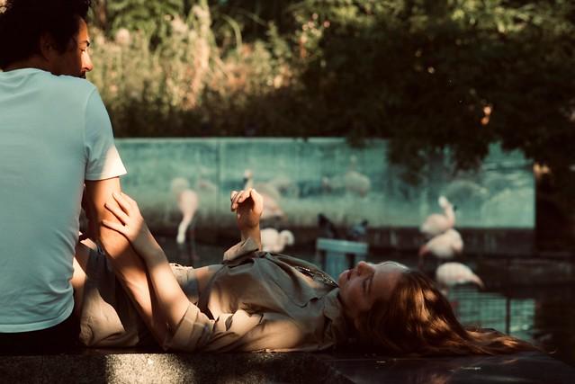 Summer Love tastes like... Flamingos