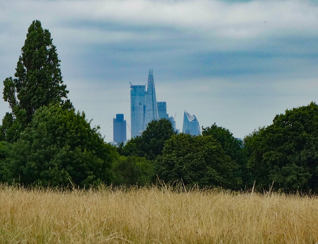 The Shard & City from Brockwell Park