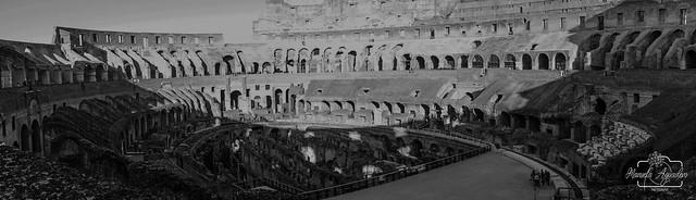 Alis volat propriis.  #coliseo #coliseum #anfiteatro #romano #ciudad #city #roma #italia #shadow #turismo #tourism #viajar #travel #paisaje #landscape #blancoynegro #blackandwhite #photography #photographer #inspired_by_colour #MiFotoDR #sonyimages #sonya