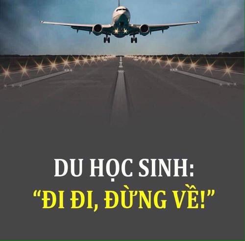 didi_dungve02
