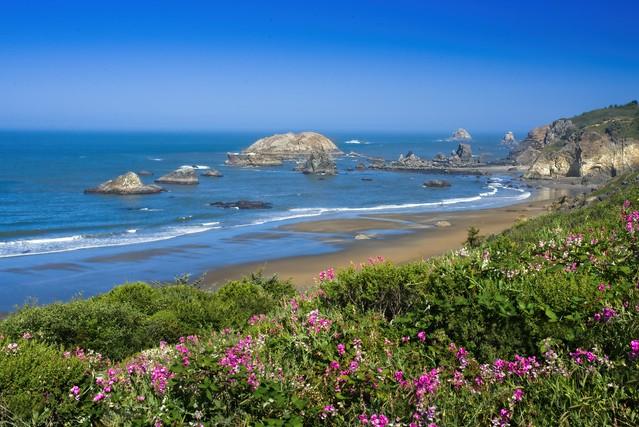 Brookings Oregon Coast 6058 A