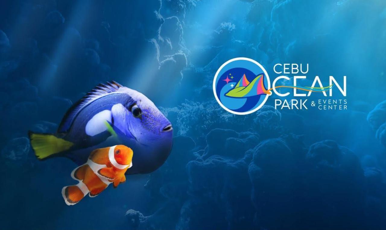 Cebu Ocean Park_3